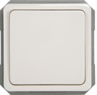 Выключатель 2-пoлюсный без рамки SPectrum SP 300